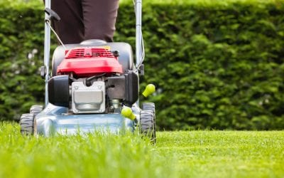 Keep up with your lawn & garden maintenance